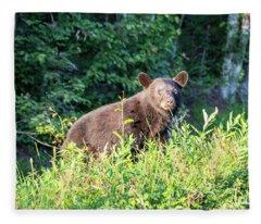 Country Bear Fleece Blanket