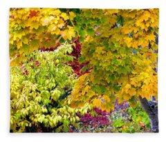Country Color 15 Fleece Blanket