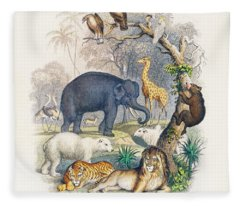 Cover Of A History Of The Earth And Animated Nature Fleece Blanket