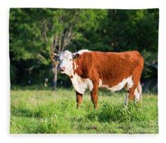 Cow #1 Fleece Blanket