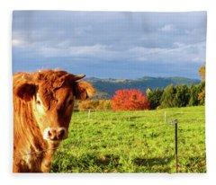 Cow And Autumn Colors  Fleece Blanket