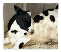 Cow Cutie Fleece Blanket