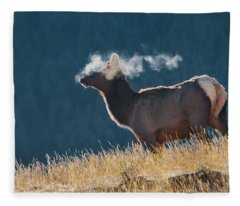 Cow Elk With Steamy Breath Fleece Blanket