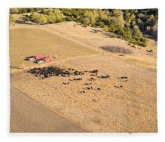 Cows And Trucks Fleece Blanket