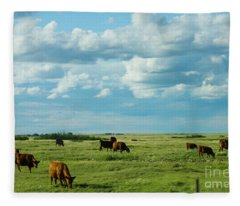 Cows In Country Fleece Blanket