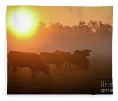 Cows In The Sunrise Mist Fleece Blanket