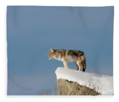 Coyote At Overlook Fleece Blanket