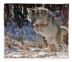 Coyote In Mid Jump Fleece Blanket