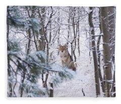 Coyote In The Aspens Fleece Blanket