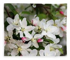 Crabapple Blossoms 13 - Fleece Blanket