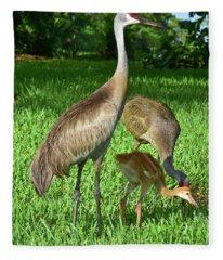 Crane Family Picnic Fleece Blanket