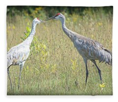 Crane Stories Fleece Blanket