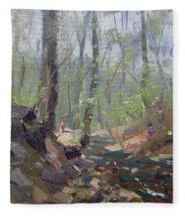 Creek At Lockport Natural Trail Fleece Blanket