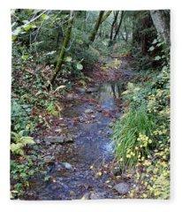 Creek On Mt Tamalpais 2 Fleece Blanket