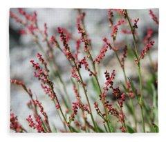 Crimson Field Fleece Blanket