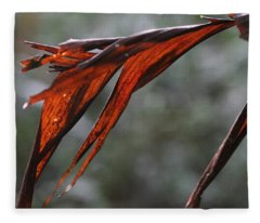 Crimson Leaf In The Amazon Rainforest Fleece Blanket