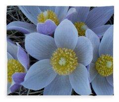 Crocus Blossoms Fleece Blanket