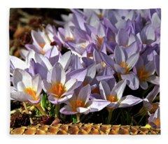 Crocuses Serenade Fleece Blanket