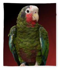 Cuban Amazon Parrot Fleece Blanket