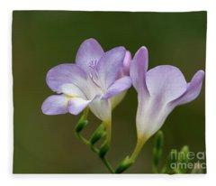 Cupertino Lavender Freesias Fleece Blanket