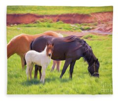 Curious Colt And Mares Fleece Blanket