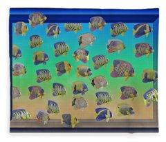 Curious Fish Fleece Blanket