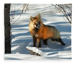 Curious Fox Fleece Blanket