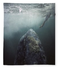 Curious Gray Whale And Tourist Fleece Blanket
