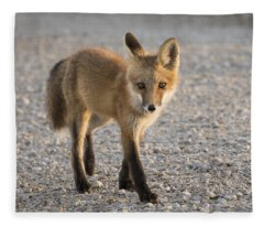 Curiousity Fleece Blanket