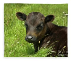 Cute Cow Fleece Blanket
