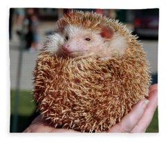 Cute Little Hedge Ball Fleece Blanket