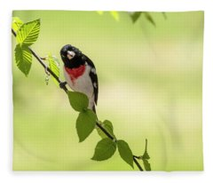 Cute Rose-breasted Grosbeak Fleece Blanket