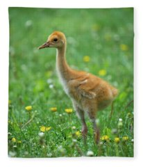 Cuteness Fleece Blanket