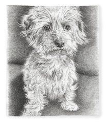 Dachshund Maltese Fleece Blanket