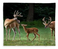 Daddy Day Care Fleece Blanket