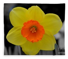 Daffodil Delight  Fleece Blanket
