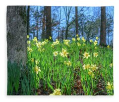 Daffodils On Hillside 2 Fleece Blanket
