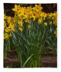Daffodils Standing Tall Fleece Blanket