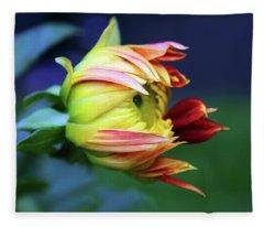 Dahlia Bud Fleece Blanket