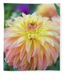 Dahlia Camano Pet Fleece Blanket