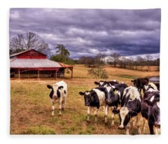 Dairy Heifer Groupies The Red Barn Dairy Farming Art Fleece Blanket