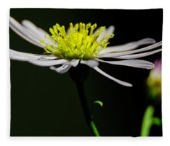Daisy Center Stage Fleece Blanket