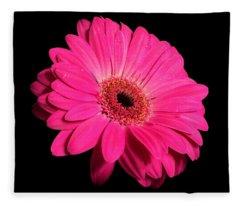 Daisy Flower On Black Fleece Blanket