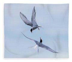 Dancing Arctic Terns Fleece Blanket