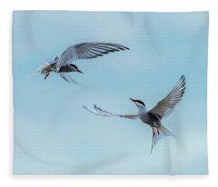 Dancing Terns Fleece Blanket