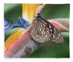 Fleece Blanket featuring the photograph Dark Blue Tiger Butterfly - 1 by Paul Gulliver