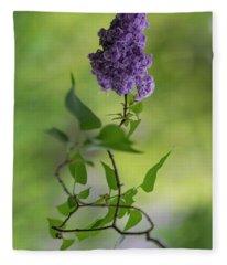 Dark Violet Lilac Fleece Blanket