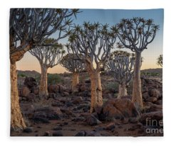 Dawn And Quiver Trees-namibia Fleece Blanket