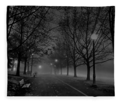 December Morning In Riverfront Park - Spokane Washington Fleece Blanket