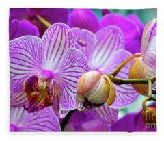 Decorative Fuschia Orchid Still Life Fleece Blanket